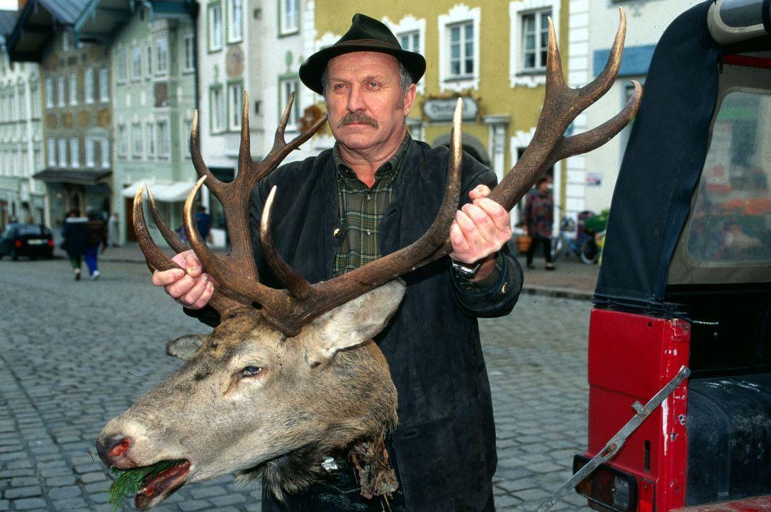 Erwin Burger (Anton Pointecker) bringt den Hirschkopf, den er vor seiner Tür gefunden hat, zur Polizei. Im Maul des toten Tieres befand sich eine sc... - Bildquelle: Magdalena Mate Sat.1