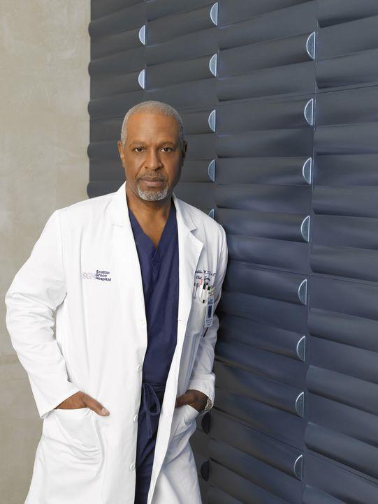 (6. Staffel) - Beruflich weiß Dr. Richard Webber (James Pickens, Jr.) immer, was er tut ... - Bildquelle: Touchstone Television