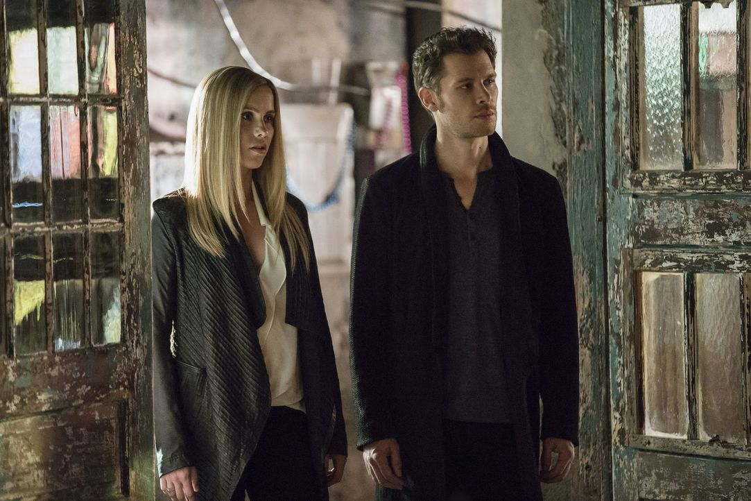 Als Rebekah (Claire Holt, l.) und Kol erfahren, dass Elijah und damit seine ganze Blutlinie ausgelöscht wurden, machen sie sich auf den Weg zurück z... - Bildquelle: 2016 Warner Brothers