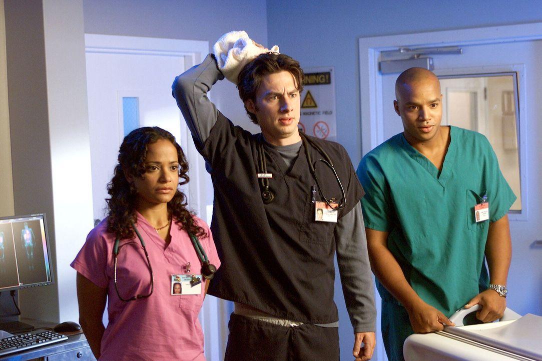 Sind von Elliots neuem Aussehen begeistert: J.D. (Zach Braff, M.), Turk (Donald Faison, r.) und Carla (Judy Reyes, l.) ... - Bildquelle: Touchstone Television