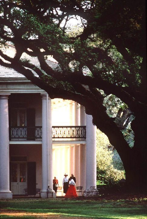 New-Orleans-18-dpa-gms - Bildquelle: dpa/gms