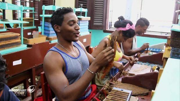 Abenteuer Leben - Täglich - Abenteuer Leben Täglich - Dienstag: Die Besten Zigarren Der Welt