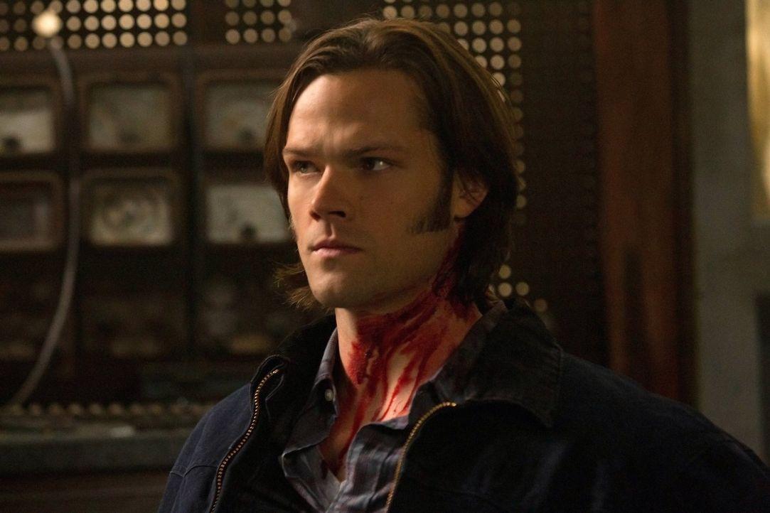 Während Dean besessen davon ist, Dick Roman zu Fall zu bringen, versucht Sam (Jared Padalecki), einem jungen Mädchen bei der Suche nach ihrem versch... - Bildquelle: Warner Bros. Television