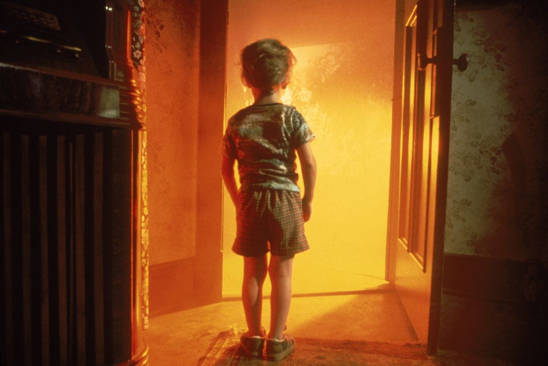 Der kleine Barry Guiler (Cary Guffey) läuft einer Lichterscheinung entgegen - und ist plötzlich verschwunden ... - Bildquelle: Columbia Pictures