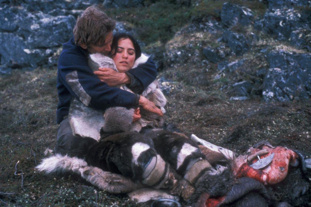 In der Wildnis der arktischen Tundra beginnt für Charlie Halliday (Barry Pepper, l.) und Kanaalaq (Annabella Piugattuk, r.) ein Kampf um Leben und... - Bildquelle: Overseas Filmgroup
