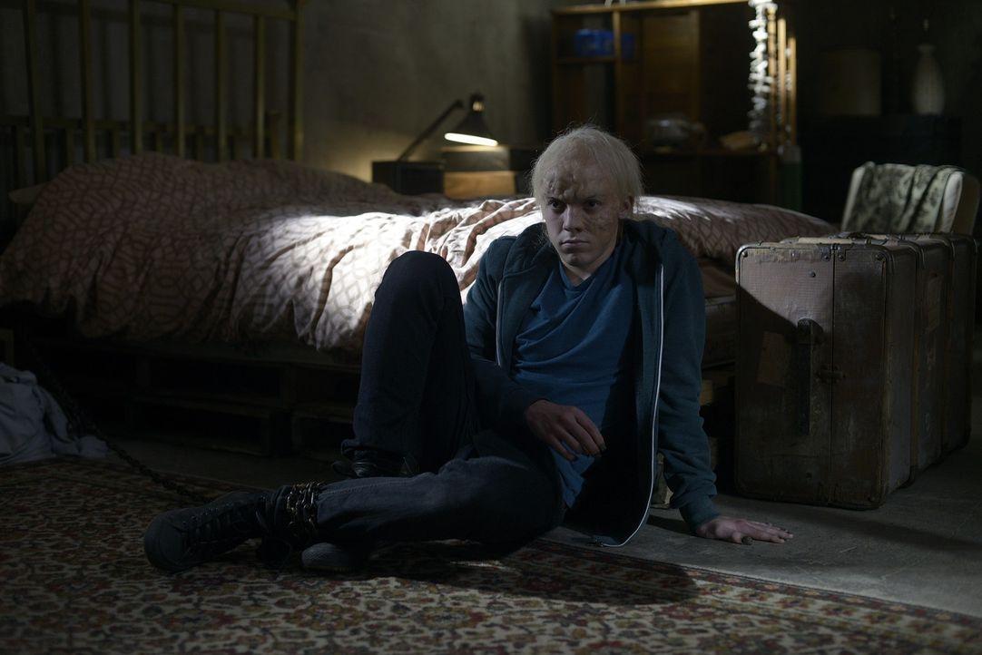 Während Josh und Nora in den Flitterwochen von Liam gestört werden, muss sich Aidan mit Kenny (Connor Price) auseinandersetzen ... - Bildquelle: Phillipe Bosse 2013 B.H. 2 Productions (Muse) Inc. ALL RIGHTS RESERVED.