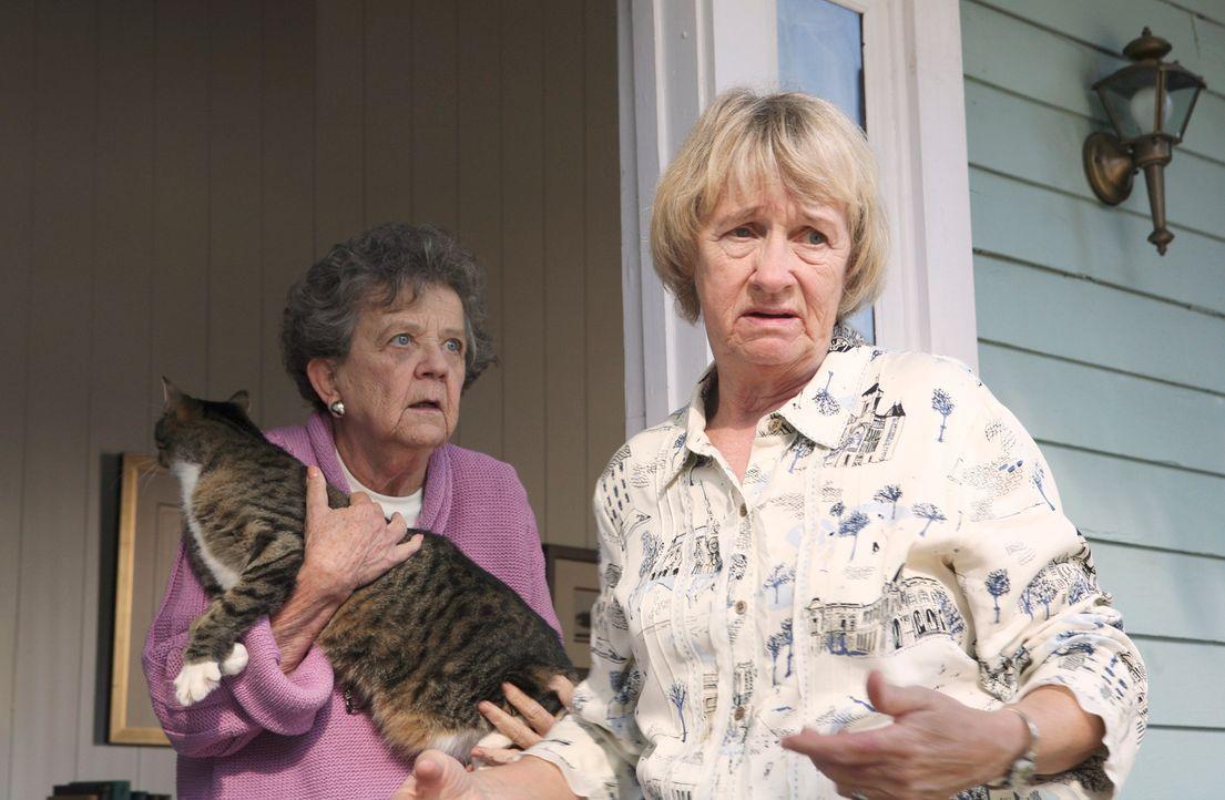 Ida Greenberg (Pat Crawford Brown, l.) und Mrs. McCluskey (Kathryn Joosten, r.)  haben die Nachbarschaft unter Kontrolle ... - Bildquelle: 2005 Touchstone Television  All Rights Reserved