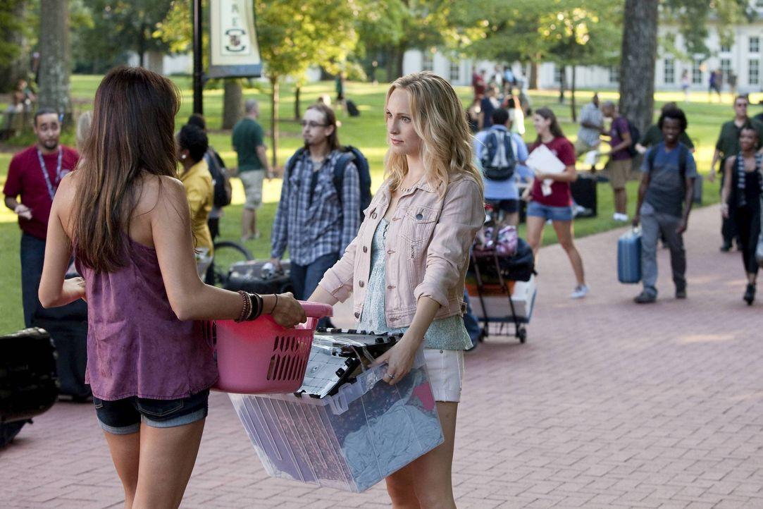 Warum denn so ernst, Caroline? - Bildquelle: Warner Bros. Entertainment Inc.