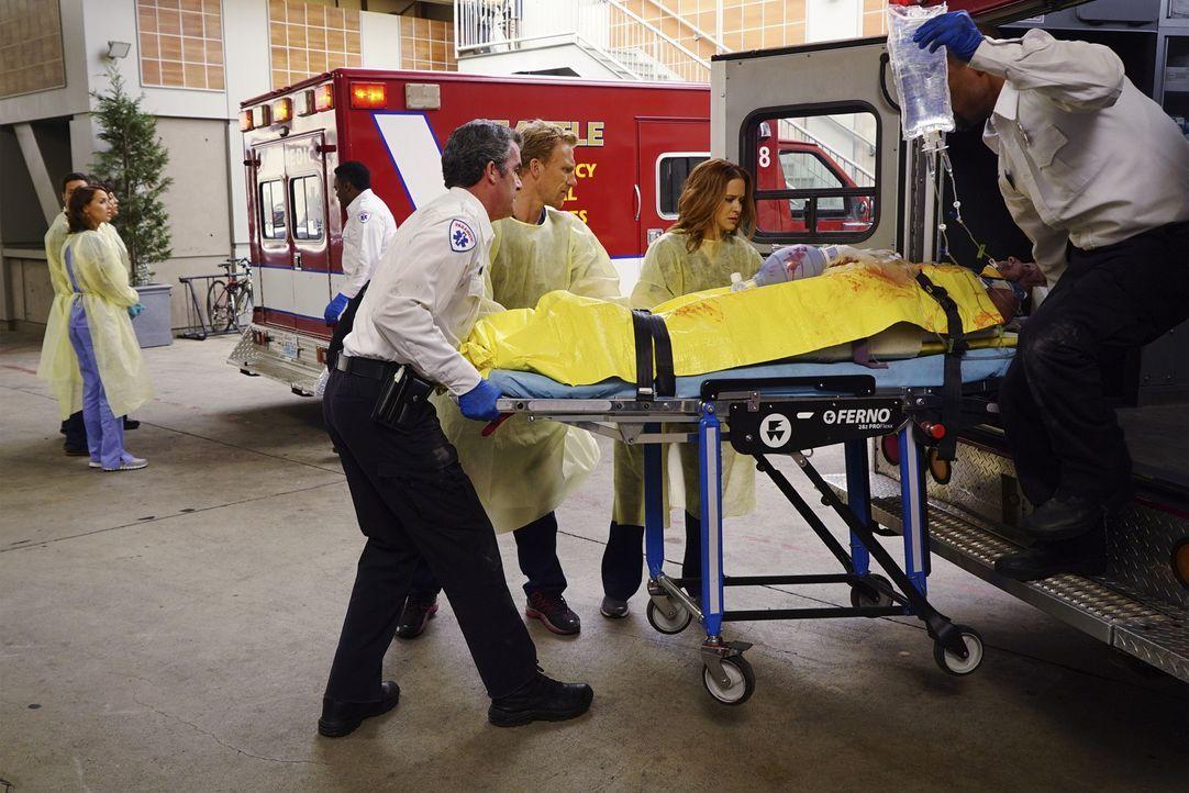 Hoffen, den Verletzten retten zu können: Owen (Kevin McKidd, vorne 2.v.l.) und April (Sarah Drew, vorne 2.v.r.) ... - Bildquelle: ABC Studios