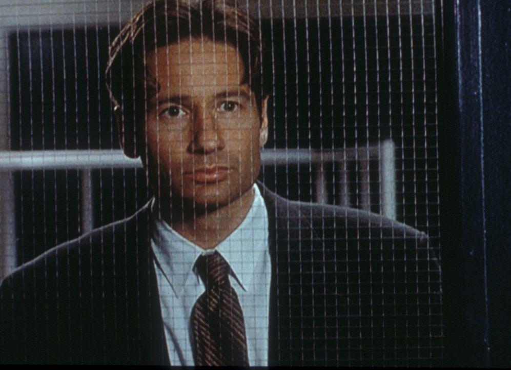 Mulder (David Duchovny) wird klar, dass er auf der Jagd nach einem Geist aus einem westafrikanischen Märchen ist. - Bildquelle: TM +   Twentieth Century Fox Film Corporation. All Rights Reserved.