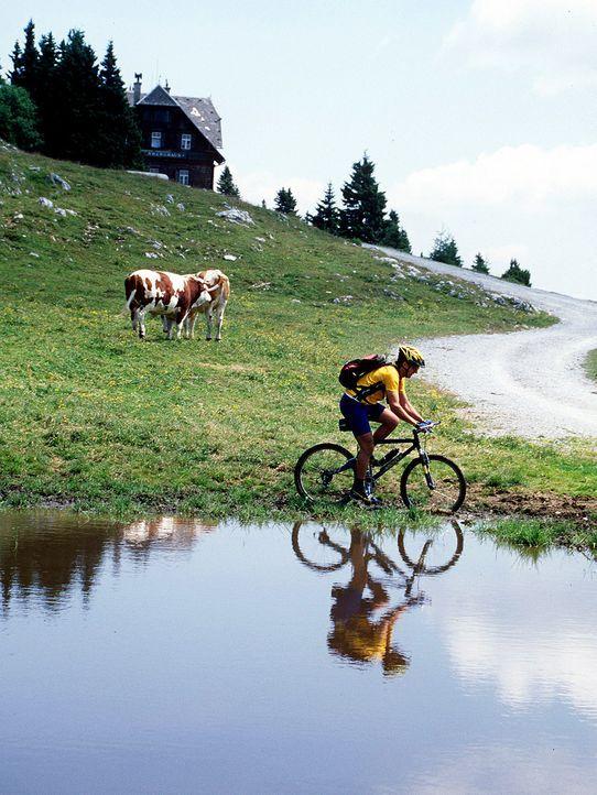 Steiermark2 - Bildquelle: dpa/gms
