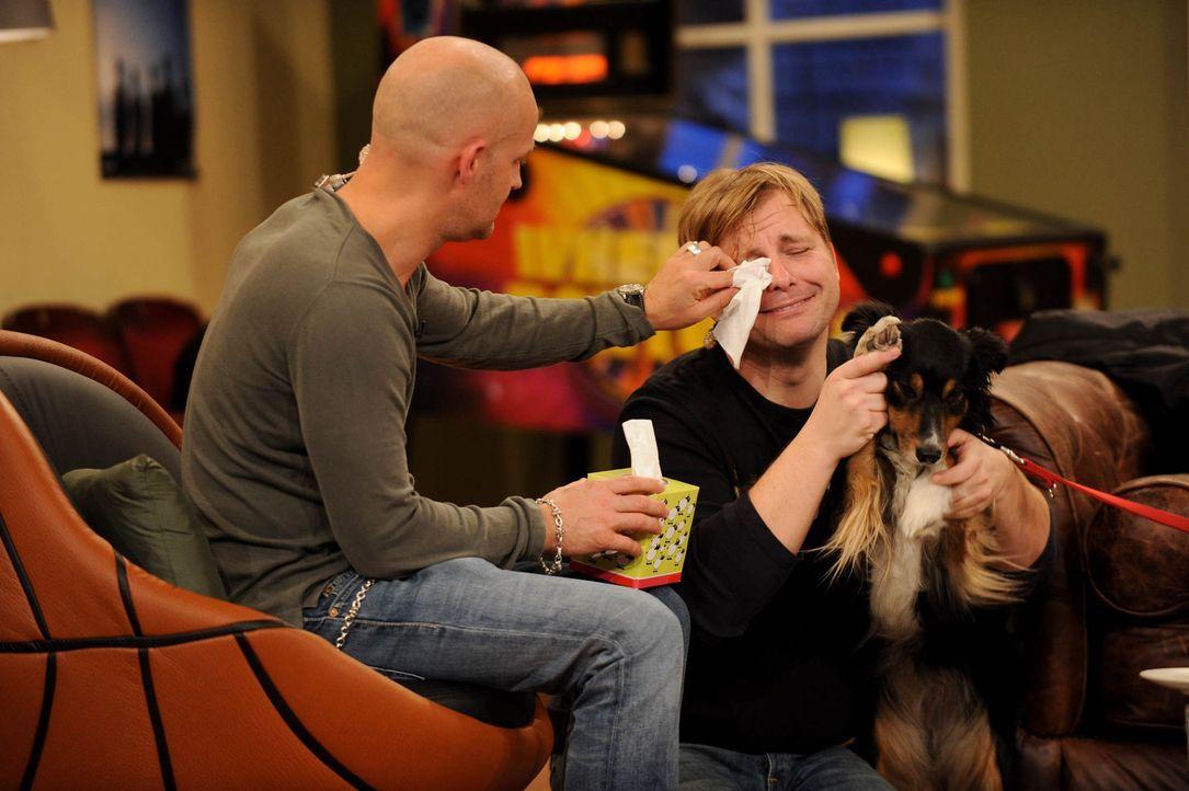 Der tierische Besuch bereitet Klempe (Martin Klempnow, r.) Tränen. Doch als guter Freund, steht Jürgen (Jürgen Vogel, l.) ihm zur Seite ... - Bildquelle: Willi Weber SAT.1