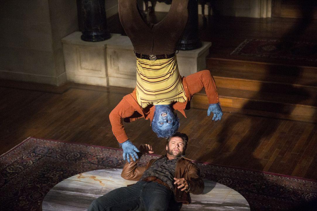 Logan (Hugh Jackman, unten) wird in die Vergangenheit versetzt, um dort die noch jungen X-Men, wie McCoy (Nicholas Hoult, oben), zu mobilisieren und... - Bildquelle: Alan Markfield 2013 Twentieth Century Fox Film Corporation.  All rights reserved.  Not for sale or duplication.