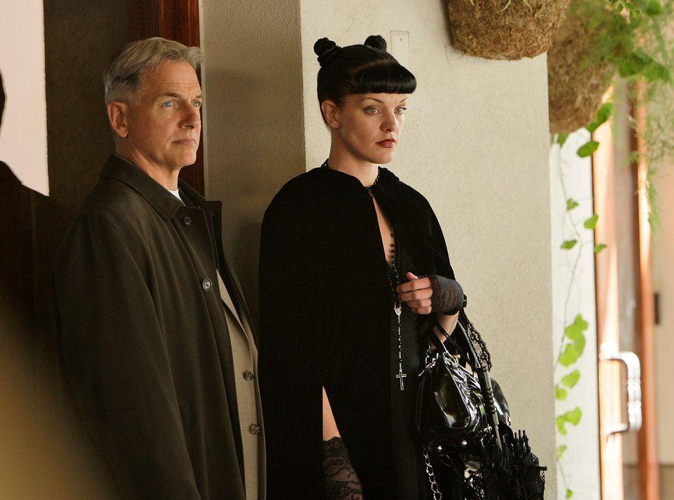 Während das FBI Abby (Pauley Perrette, r.) in ein Versuchslabor versetzt, um ein Heilmittel für eine ominöse Krankheit zu entwickeln, untersuchen Gi... - Bildquelle: CBS Television