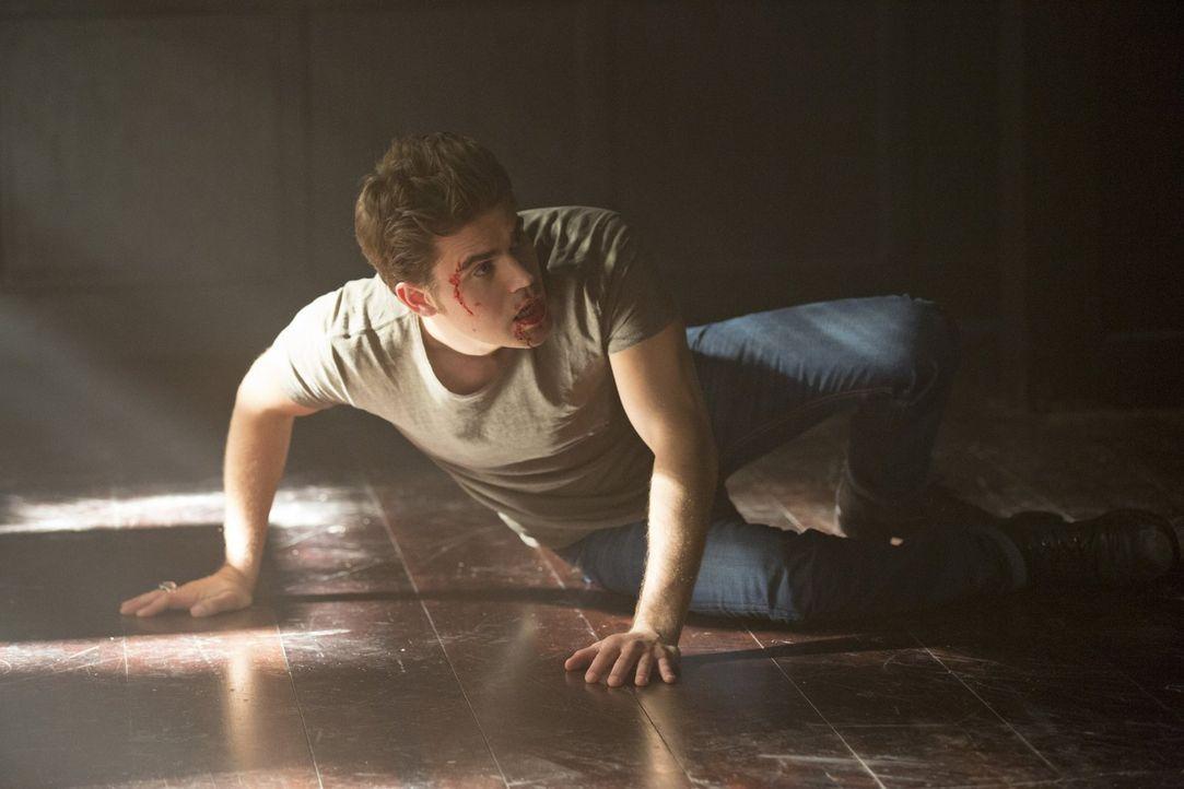 Während Stefan (Paul Wesley) mit der Gegenwart zu kämpfen hat, muss sich Damon in der Zwischenwelt mit seiner Vergangenheit auseinandersetzen ... - Bildquelle: Warner Bros. Entertainment, Inc