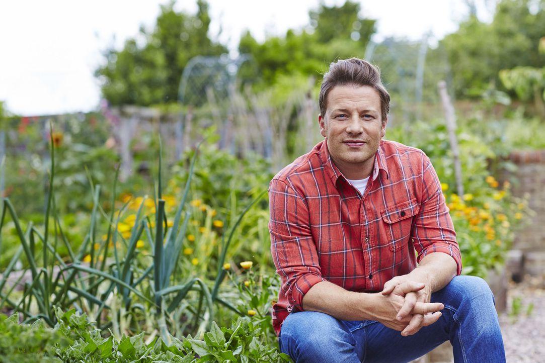 (1. Staffel) - Frische Zutaten, gute Laune und ein wenig Kreativität: Jamie Oliver weiß wie man Gerichte zubereitet, die glücklich machen ... - Bildquelle: FRESH ONE PRODUCTIONS MMXIV