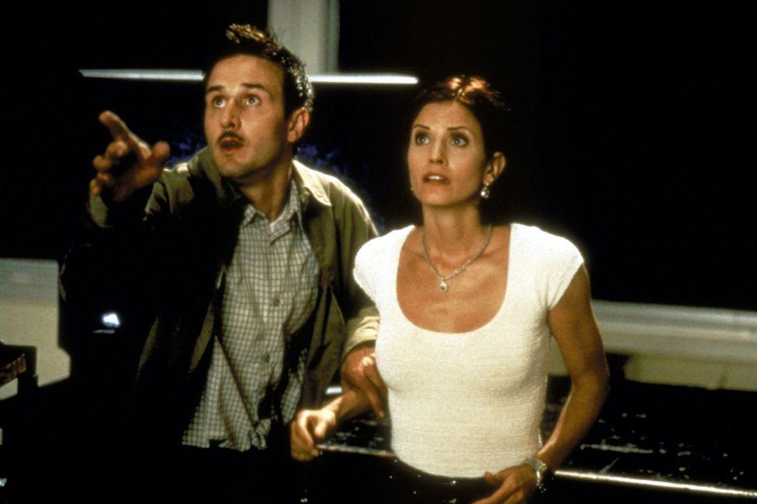 Nach zwei Jahren tauchen unerwartet der Deputy Dewey Riley (David Arquette, l.) und die Journalistin Gale Weathers (Courteney Cox, r.) auf dem Schau... - Bildquelle: Kinowelt Filmverleih GmbH 1997