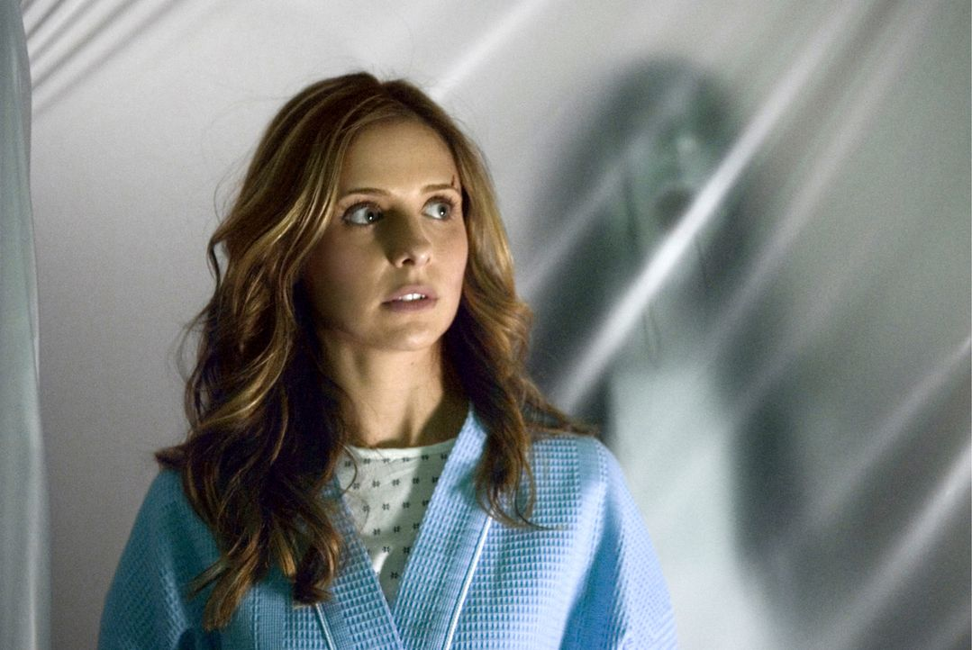 Karen (Sarah Michelle Gellar) dachte, sie sei dem Fluch entkommen, der ihr die Geister einer ermordeten Frau und ihres Sohnes auf den Hals gehetzt h... - Bildquelle: Ghost House Pictures