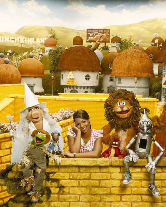 Als Dorothy Gale (Ashanti) von einem Tornado erfasst und ins ferne Land Oz gewirbelt wird, muss sie eine böse Hexe besiegen, um wieder heimkehren zu... - Bildquelle: The Muppets Holding Company, LLC. MUPPETS characters and elements are trademarks of the Muppet Holding Company, LLC.  All rights reserved