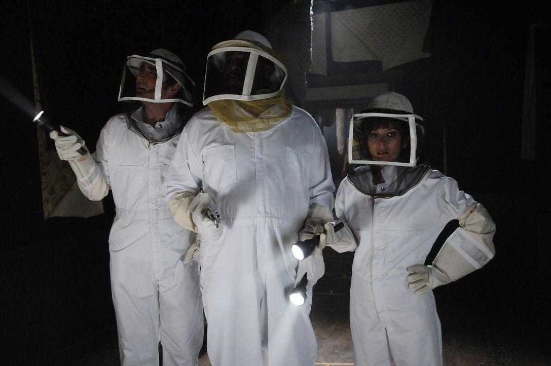 Kentucky Fitz, ein Bienenmädchen von Betty's Bienen, ist ums Leben gekommen. Ein Bienenschwarm hat sie zu Tode gestochen. Die tote Kentucky erzähl... - Bildquelle: Warner Brothers