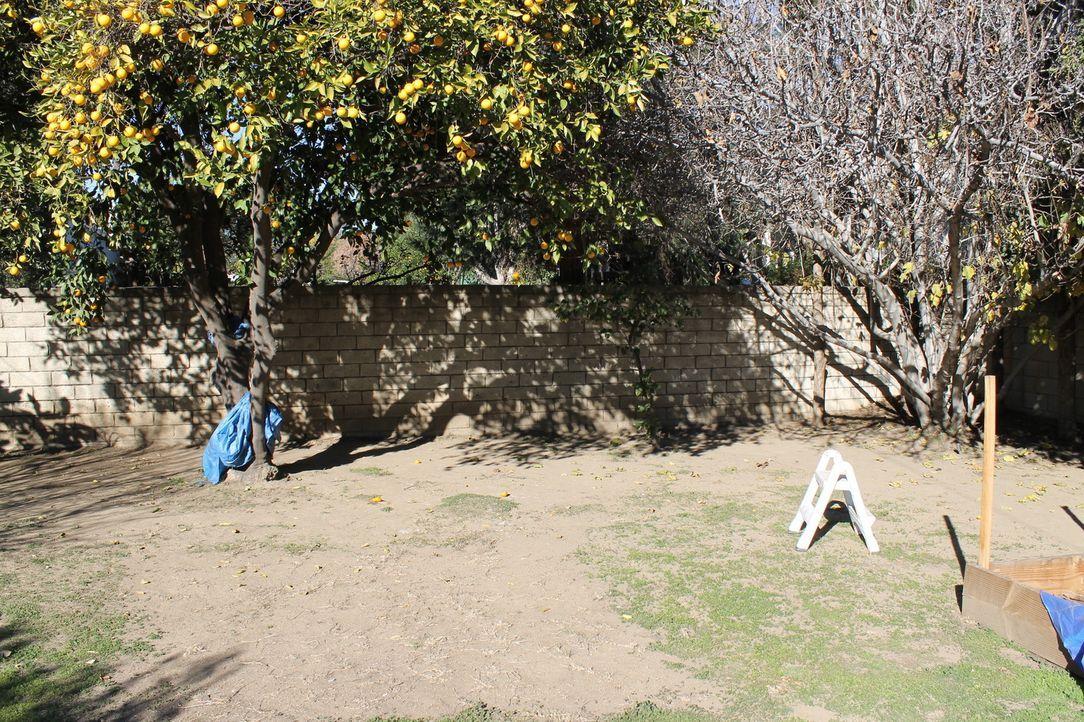 Der Garten von Ray und seinen beiden Töchtern ist alles andere als ansprechend. Das wird sich jetzt ändern, denn Landschaftsgärtnerin Sara Bendrick... - Bildquelle: 2013, DIY Network/Scripps Networks, L.L.C. All rights Reserved