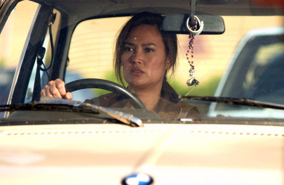 Die Agentin Lisa Delgado (Tia Carrere) ist nicht bereit, in dem sicheren Schutzbunker das Weltenende abzuwarten. Sie macht sich auf, ihrer Familie b... - Bildquelle: Hallmark Entertainment