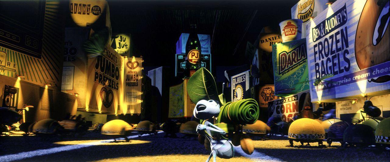 Zum ersten Mal in seinem Leben ist die Ameise Flik in der Großstadt. Er ist völlig überwältigt und überfordert ... - Bildquelle: Disney/Pixar