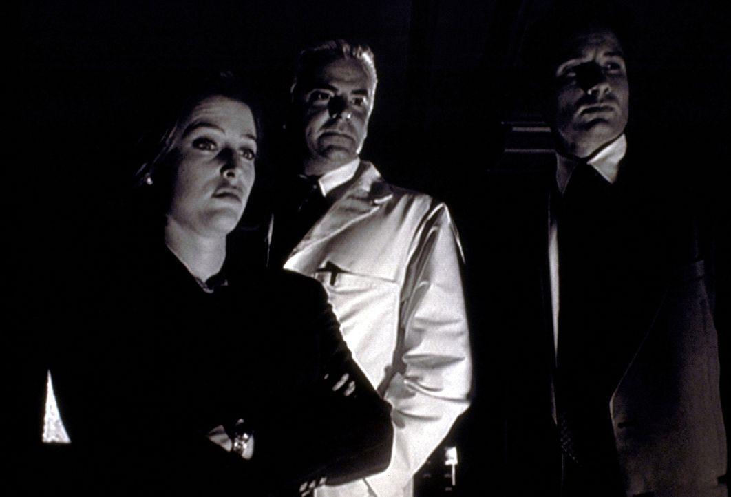 Scully (Gillian Anderson, l.) und Mulder (David Duchovny, r.) sind entsetzt von den bizarren gentechnischen Experimenten, die ihnen Dr. Pollidori (J... - Bildquelle: TM +   2000 Twentieth Century Fox Film Corporation. All Rights Reserved.