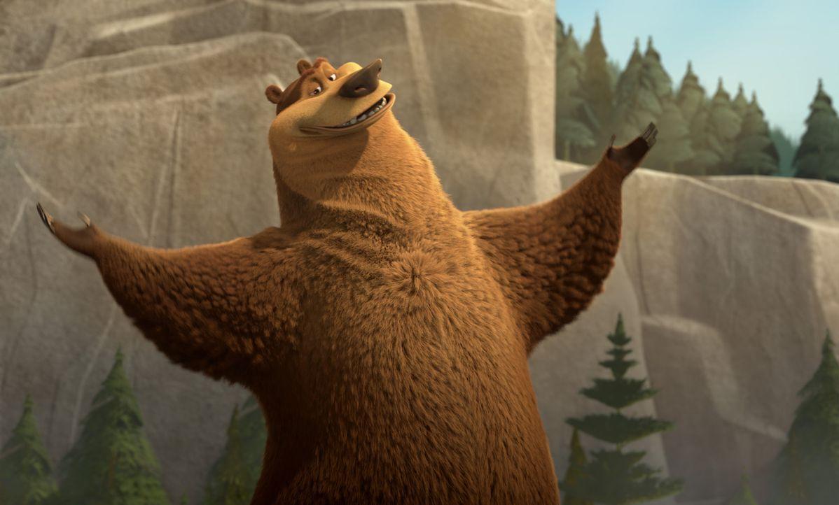 Der verwöhnte Grizzly Boog soll ausgewildert werden - er hat keinen blassen Schimmer, was das für ihn wirklich bedeutet ... - Bildquelle: Sony Pictures Television International. All Rights Reserved