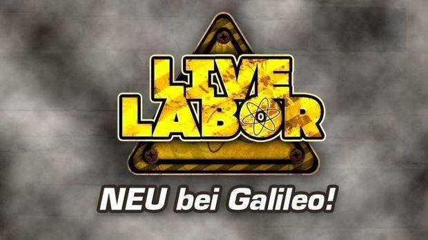 Galileo Live Labor Logo