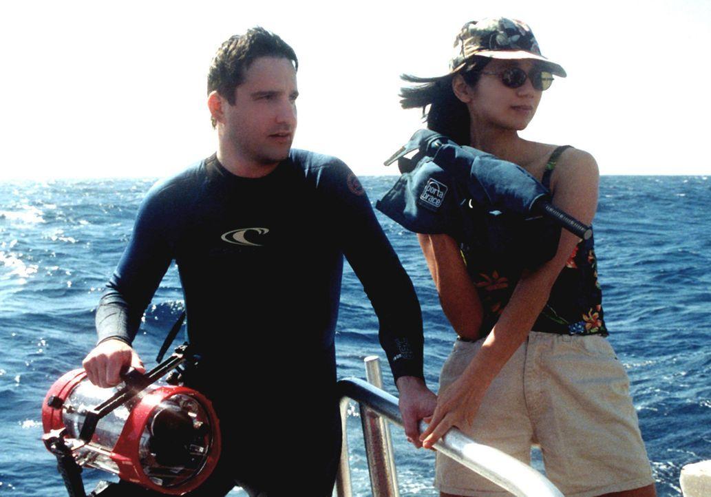 Regisseur Chris Kentis, l. und seine Ehefrau Laura Lau, r., die das Drehbuch schrieben, den Film produzierten, die Kamera führten und schließlich... - Bildquelle: Ben Lau 2004 Lions Gate Films. All Rights Reserved.