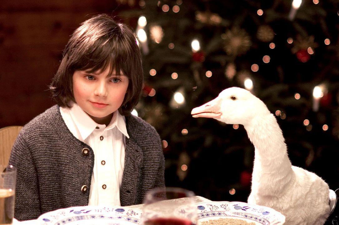 Als seine Lieblingsgans Henriette zu Weihnachten geschlachtet werden soll, setzt Rudi (Markus Krojer) alles daran, sie zu retten. Sein Großvater ha... - Bildquelle: Walter Wehner Sat.1
