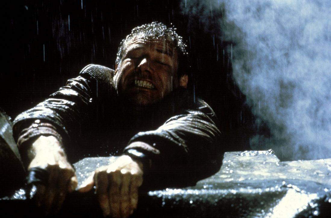 Deckards (Harrison Ford) Leben hängt an einem seidenen Faden, als er auf der Spitze eines Wolkenkratzers den Anführer der Rebellen stellen kann ... - Bildquelle: Warner Bros.