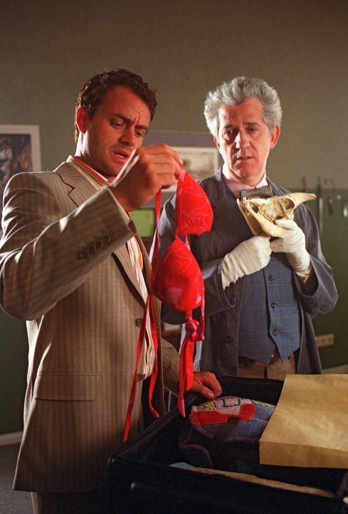 Daniel (André Röhner, l.) und Franz (Ilja Richter, r.) sind beim Öffnen des Koffers überrascht, statt der Designer-Schmuckentwürfe Damendessous... - Bildquelle: Sat.1