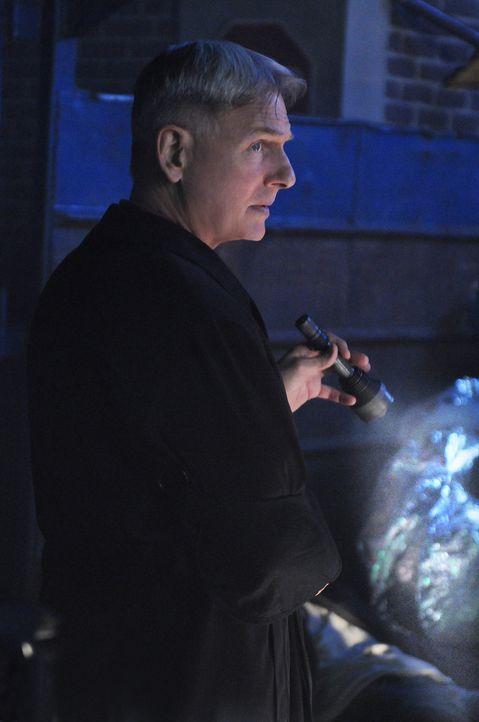 Als ein Freund von Damon Werth ermordet wurde, bittet er Gibbs (Mark Harmon) und sein Team um Hilfe ... - Bildquelle: CBS Television