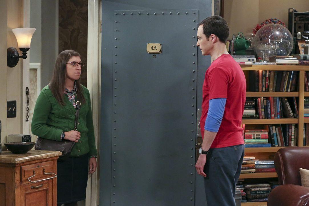 Obwohl Sheldon (Jim Parsons, r.) alles versucht um Amy (Mayim Bialik, l.) zurückzugewinnen, bleibt diese standhaft ... - Bildquelle: 2015 Warner Brothers
