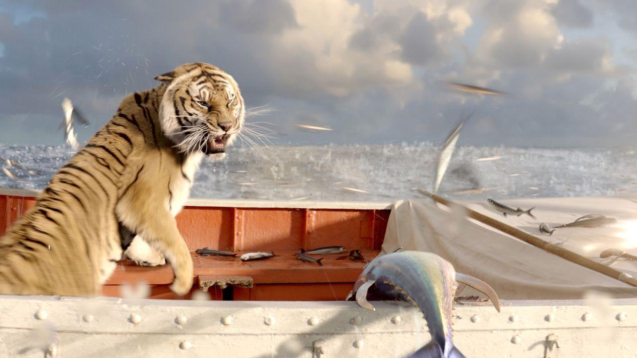 Fliegende Fische sichern vorerst sein Überleben, doch wie lange kann Richard Parker seinen Hunger damit stillen? - Bildquelle: 2012 Twentieth Century Fox Film Corporation. All rights reserved.