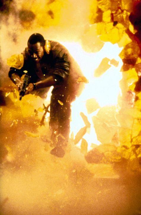 Axel (Eddie Murphy) muss mal wieder seinen Dickkopf beweisen und sorgt in Beverly Hills ordentlich für Chaos. Doch mit den schmierigen Gangstern is... - Bildquelle: Paramount Pictures