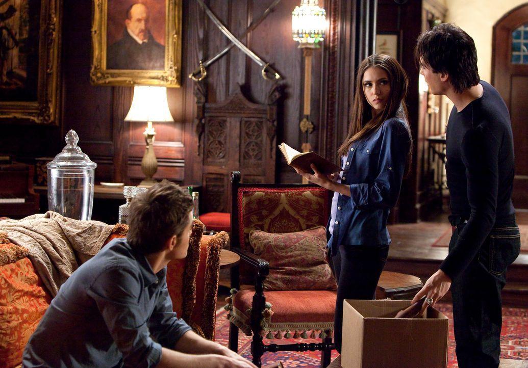 Katherine (Nina Dobrev, M.) bietet Stefan (Paul Wesley, l.) und Damon (Ian Somerhalder, r.) ihre Hilfe an, um den Urvampir Klaus zu töten ... - Bildquelle: Warner Brothers
