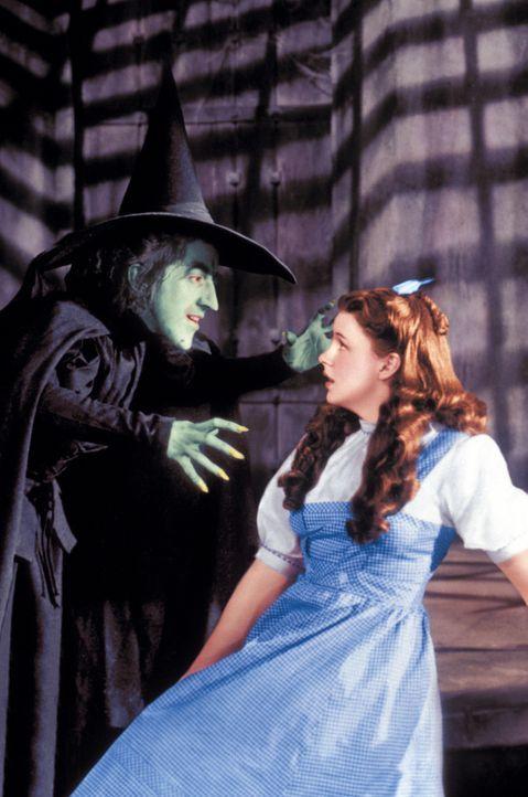 Da Dorothy (Judy Garland, r.) bei ihrer Ankunft im magischen Land Oz direkt auf der bösen Hexe des Ostens gelandet ist und diese den Sturz nicht übe... - Bildquelle: Warner Bros.