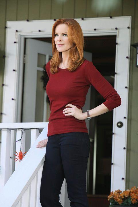 Kann nicht glauben, was Ben vor hat: Bree (Marcia Cross) ... - Bildquelle: ABC Studios