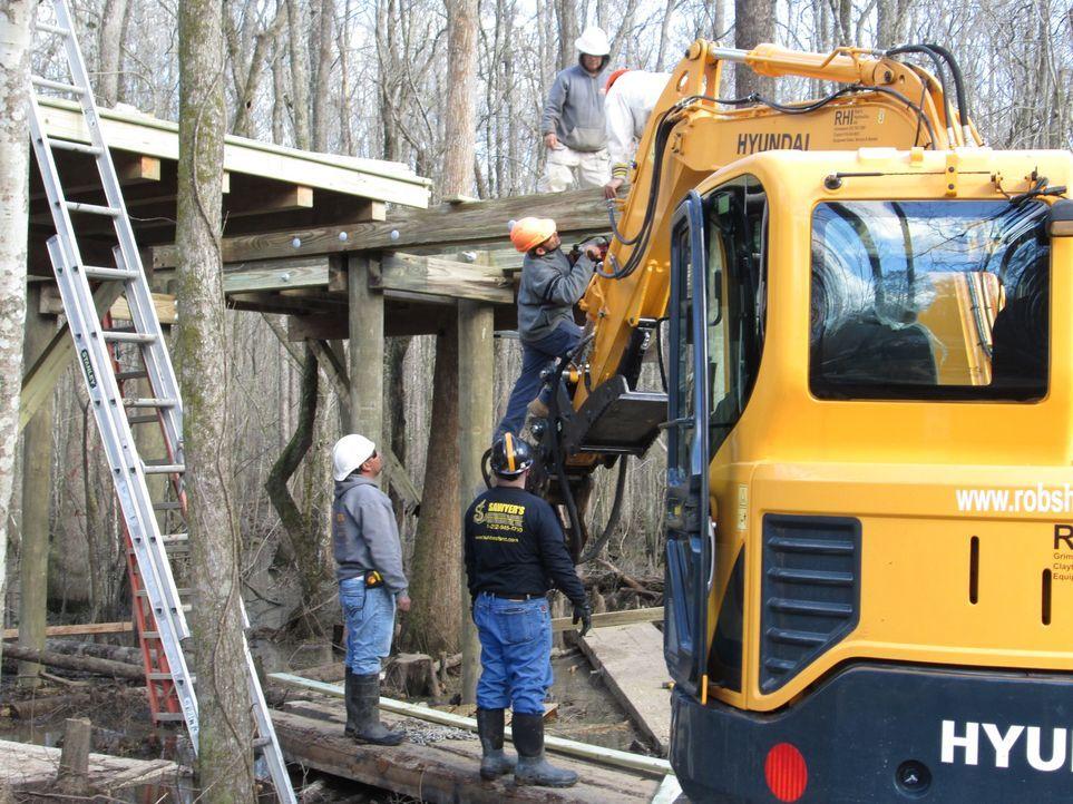 Eine Baumhaus-Landschaft mitten im Moor? Eigentlich kein Problem für die Baumhaus-Profis, oder? Bei den Arbeiten mitten im Sumpf von Windsor ergeben sich aber doch einige Schwierigkeiten für die Treehouse-Designer ...