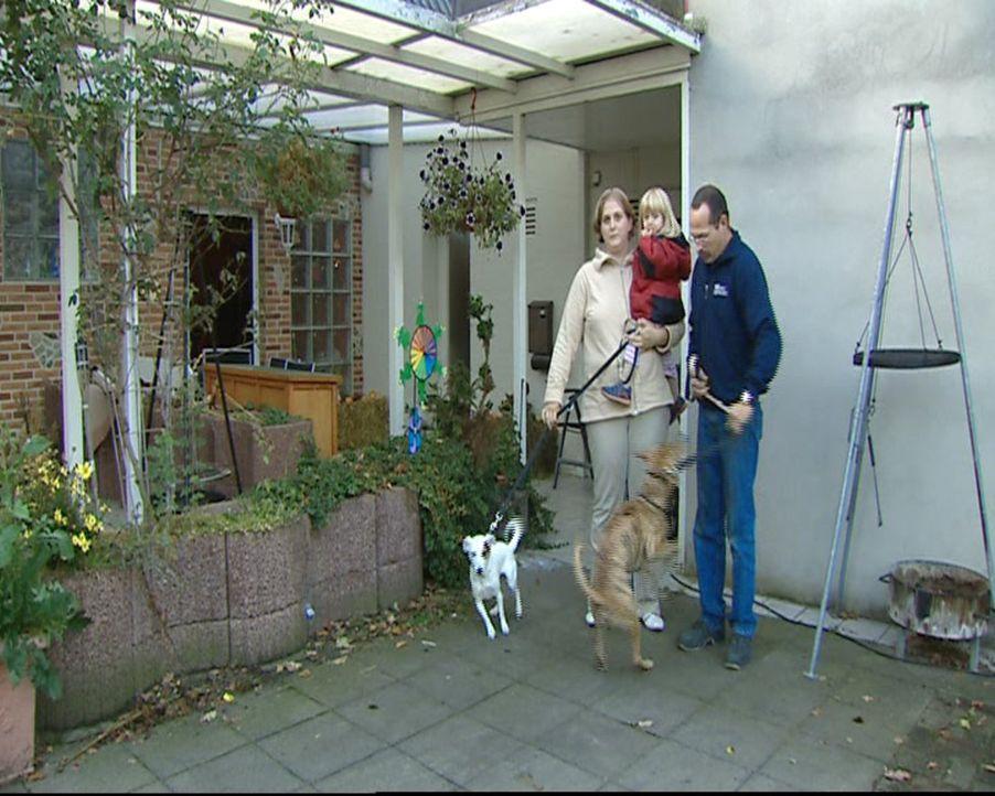 Stefanie ist Hundetherapeutin und hilft der verzweifelte Hundebesitzern Nicole Bennet (l.), ihren Hund wieder in den Griff zu bekommen. Ohne Gewalt... - Bildquelle: SAT.1 Gold