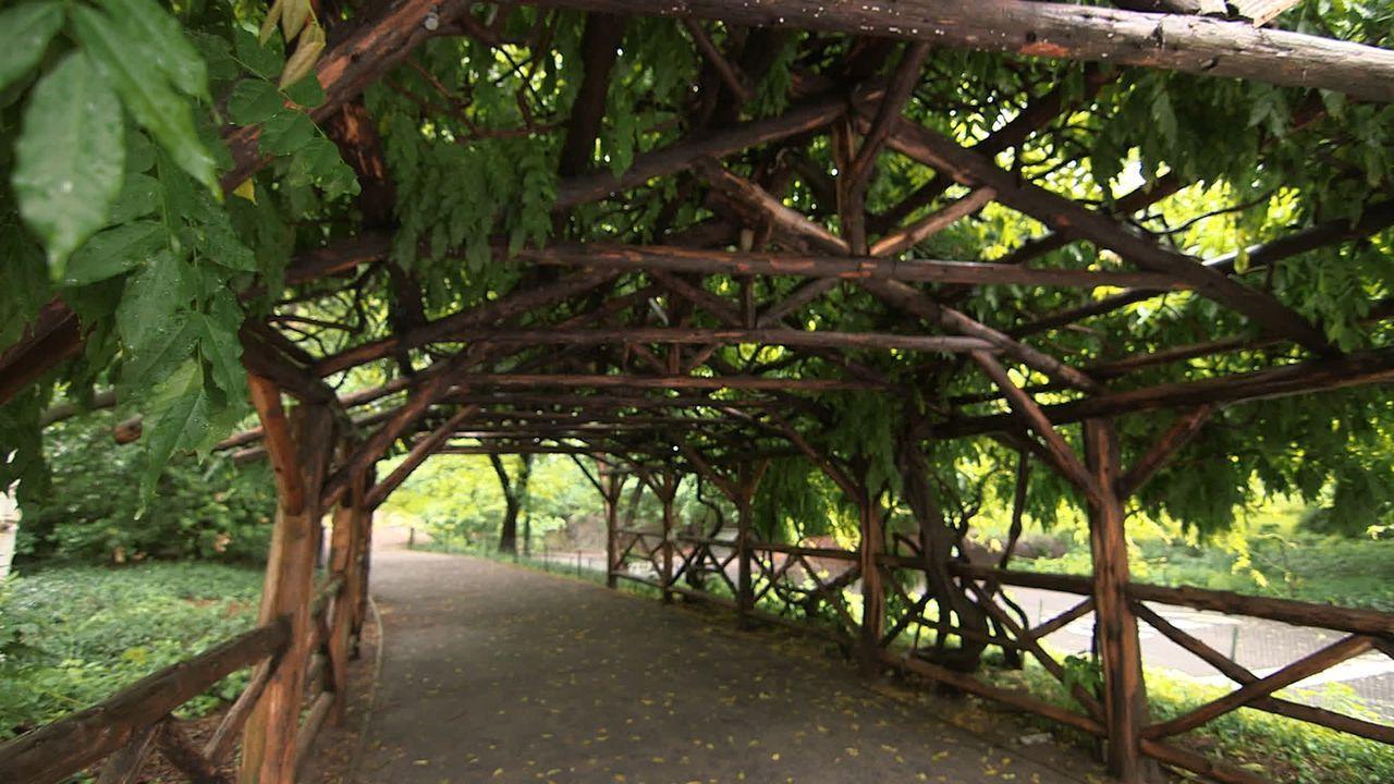Eine so großartige Stadt wie New York City benötigt auch einen ebenso großartigen Park - den Central Park. Die berühmteste Grünfläche der Welt erstr... - Bildquelle: Indigo Films/ DCL