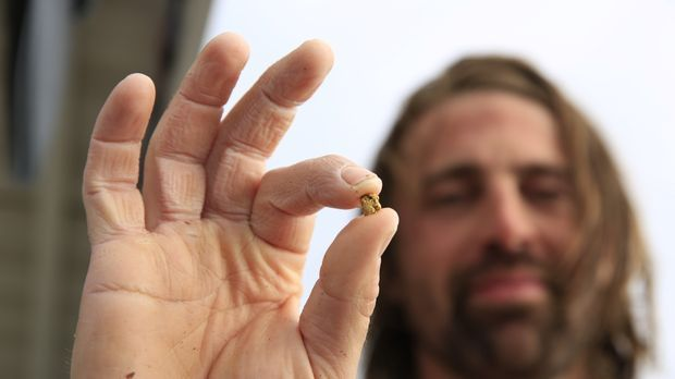 Gold Nugget in Ian's Hand