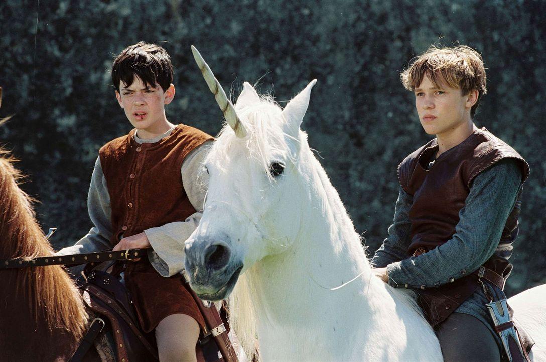 Edmund (Skandar Keynes, l.) und Peter (William Moseley, r.) versuchen, den Fluch der weißen Hexe zu brechen und damit Narnia ein Leben im ewigen Wi... - Bildquelle: Disney Enterprises. All rights reserved