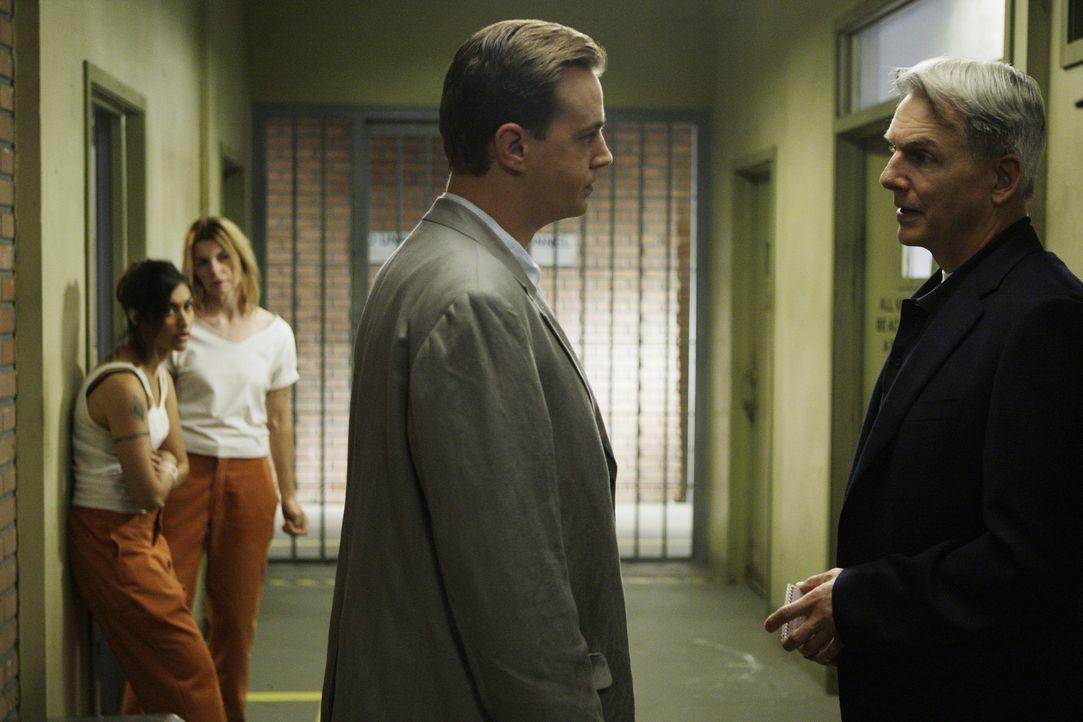Während sich McGee (Sean Murray, 2.v.r.) auf den Weg nach Maryland macht, um der Sache auf den Grund zu gehen, passiert ein Mord und nun liegt es a... - Bildquelle: CBS Television