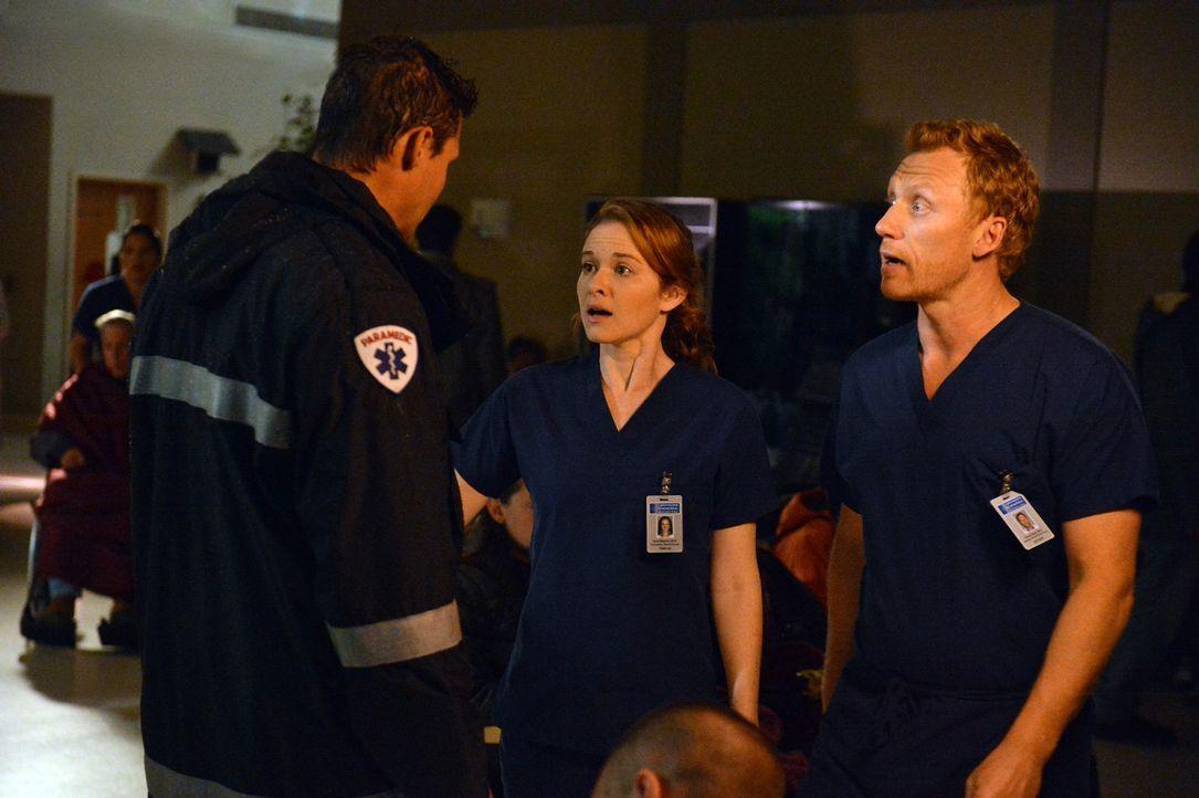 Matthew (Justin Bruening, l.) eilt ins Krankenhaus, um zu helfen. April (Sarah Drew, M.) und Owen (Kevin McKidd, r.) versuchen eine Struktur in das... - Bildquelle: ABC Studios