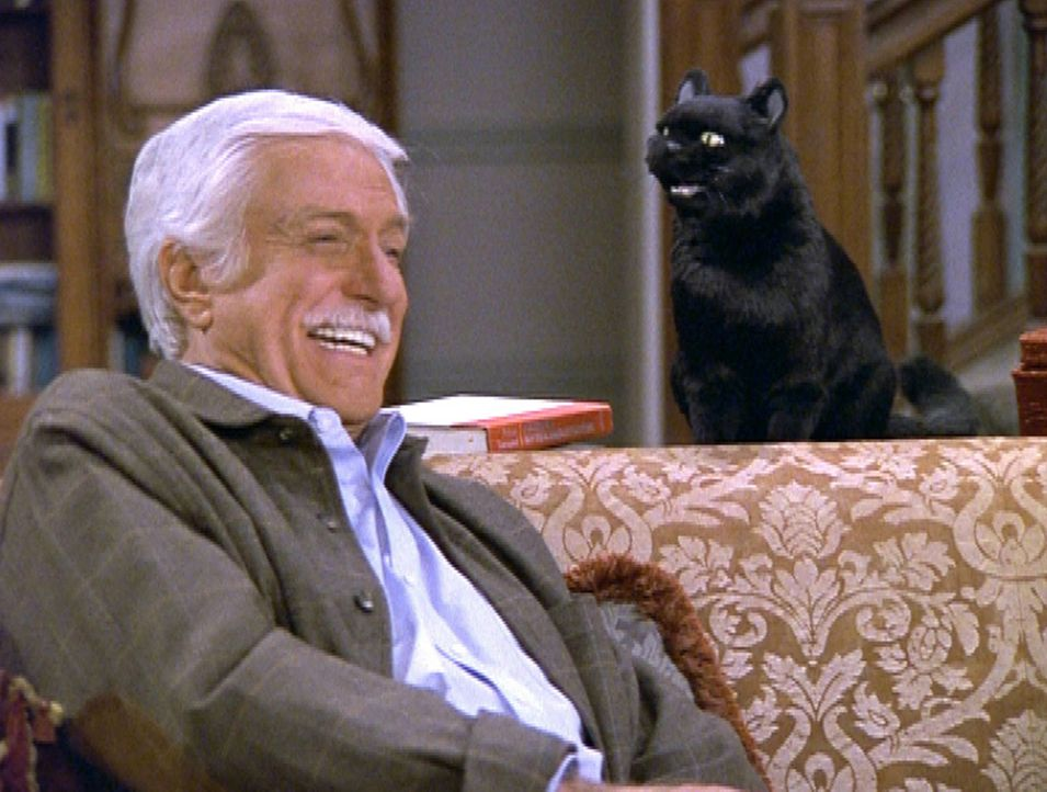 Duke (Dick Van Dyke), ein ehemaliger Kumpan von Salem, hat seine Strafe als Katze abgesessen. - Bildquelle: Paramount Pictures