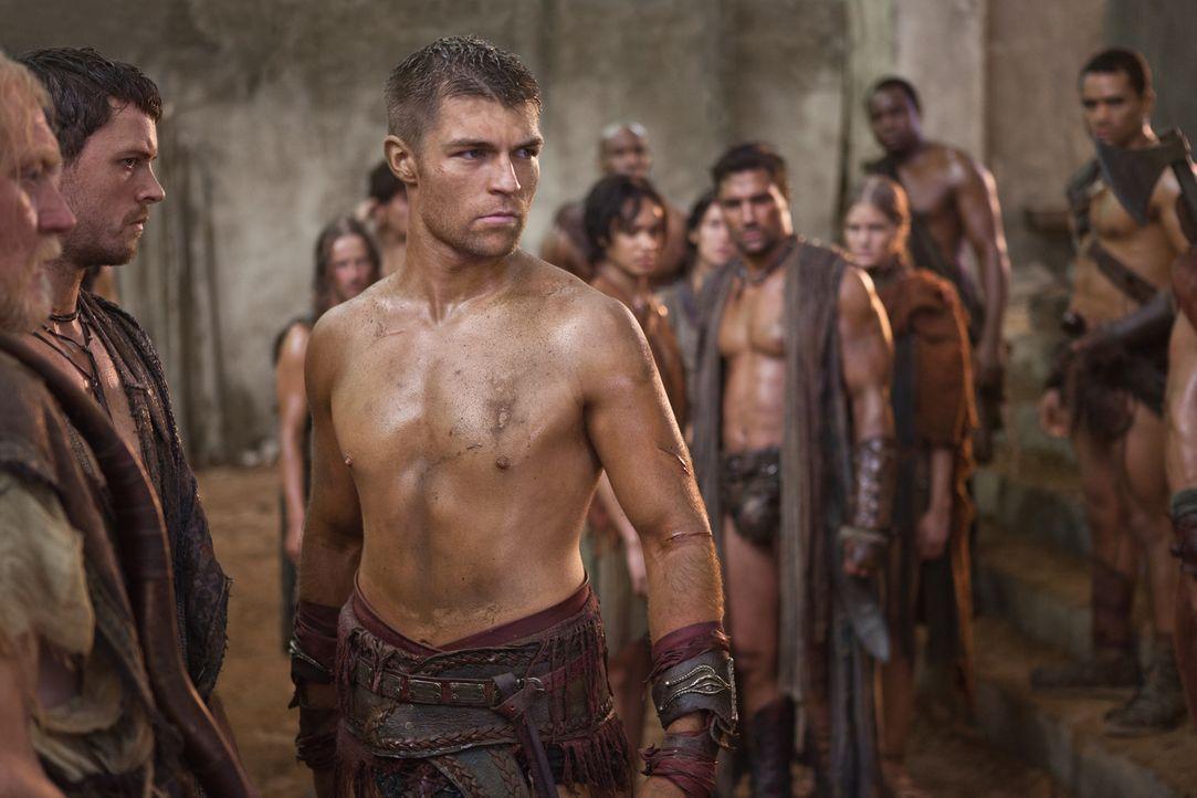Spartakus (Liam McIntyre) und seine Leute beschließen, am Tempel eine Wehrmauer zu errichten und unterirdische Fluchtwegen anzulegen. Außerdem solle... - Bildquelle: 2011 Starz Entertainment, LLC. All rights reserved.